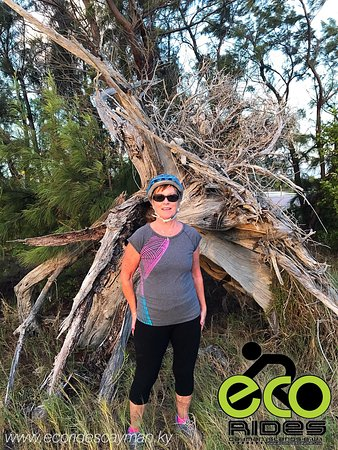East End, Grand Cayman: Old tree stump left as remnants of Hurricane Ivan. There is lots to see with ECO Rides Cayman.