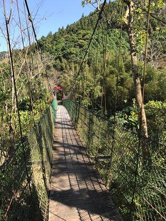 Bagua Bridge