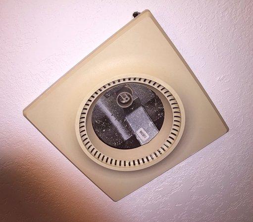 Allen Park, MI: No bulb in the heat lamp.