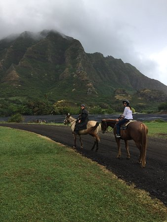 Kaneohe, HI: Thank you , Cory.  !  Amazing.