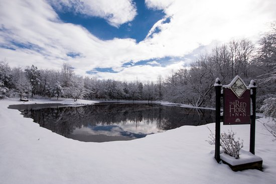 Landrum, SC: A snowy morning at our pond.