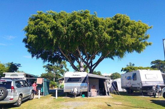 Noosaville, Austrália: Our park is suitable for all types of vehicles
