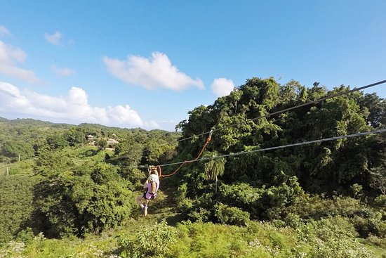 Monkey Jungle and Zip Line Adventures