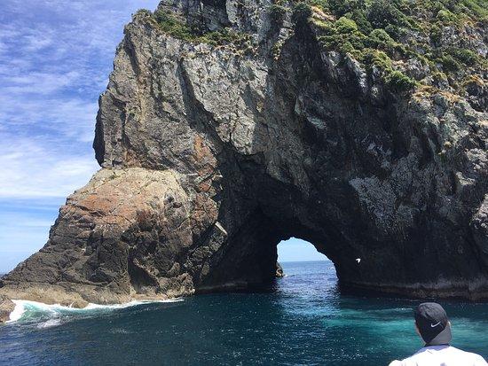 Paihia, New Zealand: photo4.jpg
