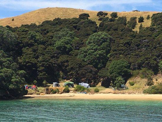 Paihia, New Zealand: photo6.jpg