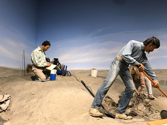 Lehi, UT: North American Museum of Ancient Life