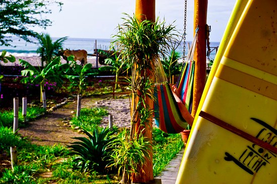 Popoyo, Nicaragua: Cafe con Leche is located on one fo the best surf spot in Nicaragua.