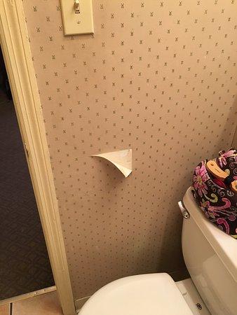 Shawnee on Delaware, Pensilvania: wallpaper coming off.