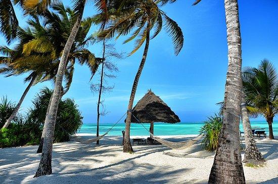 Pongwe Beach Hotel