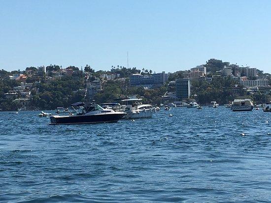 Barco Palao: photo7.jpg