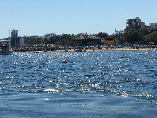 Barco Palao: photo8.jpg