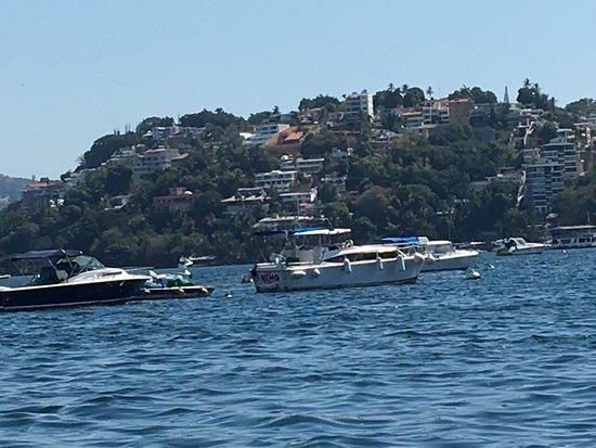 Barco Palao: photo9.jpg