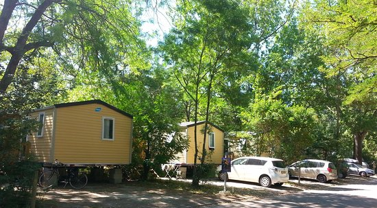 Camping Du Pont D Avignon 2018 Prices Reviews France Photos Of Campground Tripadvisor
