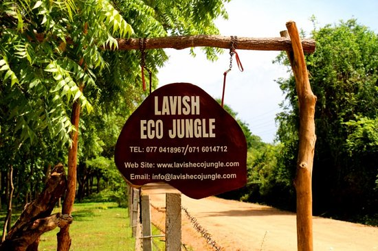 Lavish Eco Jungle