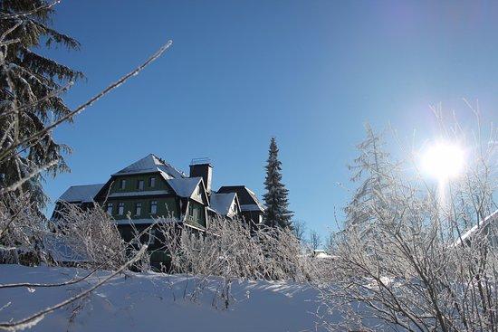 Hotel Gabelbach: Winter 2017 Blick aufs Hotel vom Goethe-Wanderweg