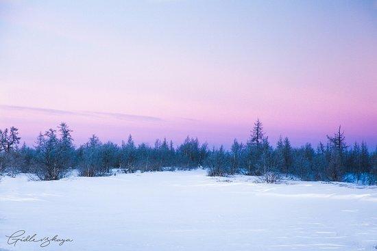 Naryan-Mar, روسيا: Красоты Заполярья