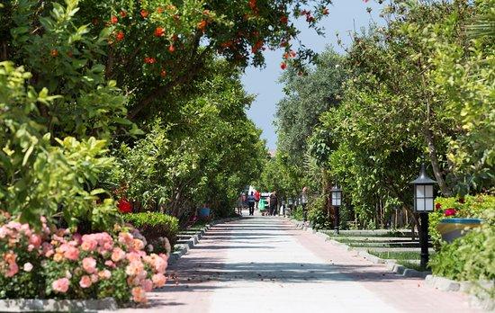 Foto de Ozlem Garden