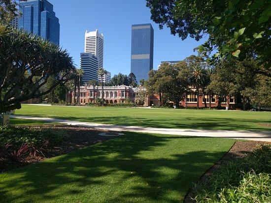 Supreme Court Gardens: Edges of the garden