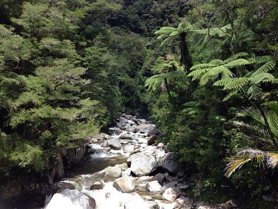 Pohara, Νέα Ζηλανδία: photo0.jpg