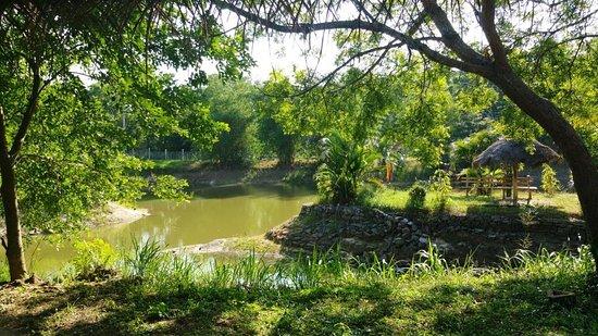 Yapahuwa, Sri Lanka: Schöner kl. See mit Platz zum sitzten und verweilen