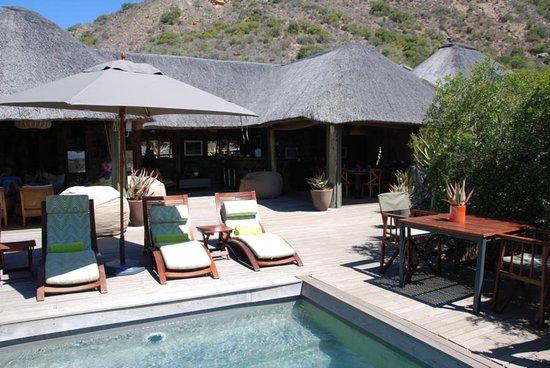 Amakhala Game Reserve, Sudáfrica: Lounge