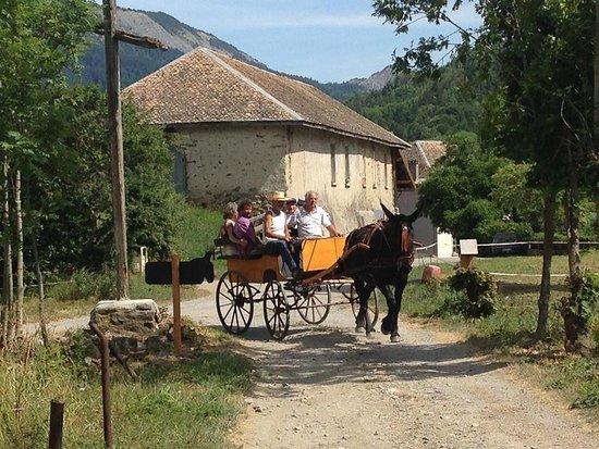 Seyne-les-Alpes, France : animation sur les métiers du mulet