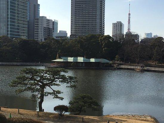 Jardines Hama Rikyu: photo8.jpg