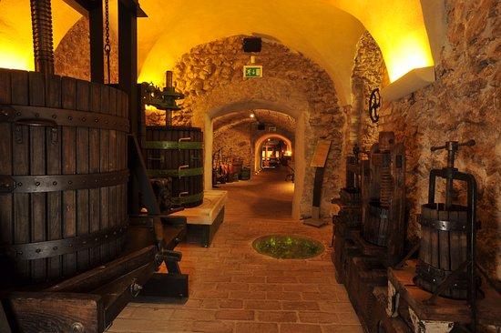 Pezinok, Slovakia: Wine celler