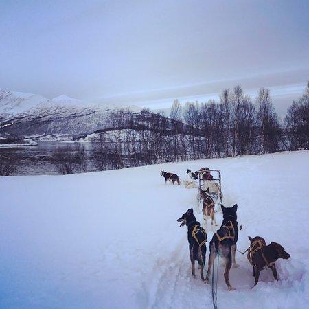 Lyngen Municipality, Noruega: photo0.jpg