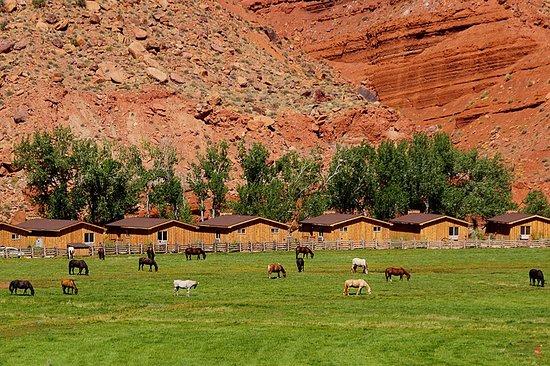 Red Cliffs Lodge: Ferienhäuser direkt am Colorado River