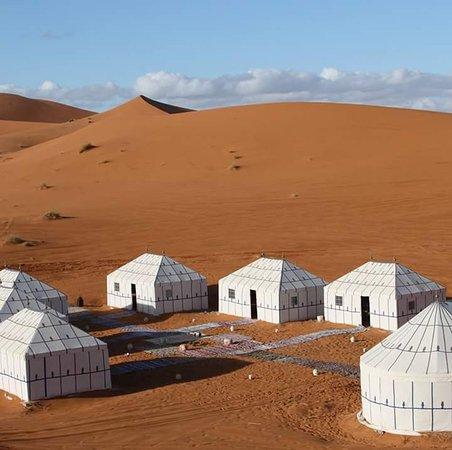 Fleeting Star Camel Camp