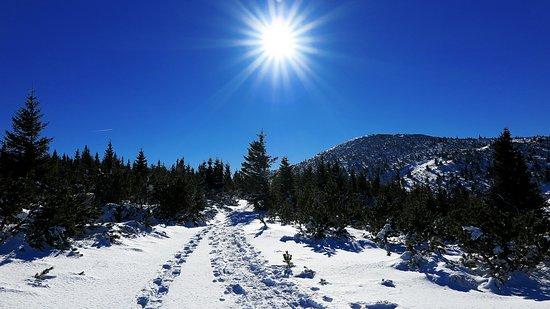 Reichenau an der Rax, Austria: Schneeschuhwanderung