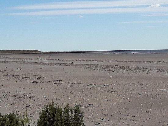 Sierra Grande, Argentina: 20170103_081016_large.jpg