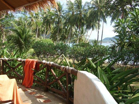 Bilde fra Koh Tao Cabana