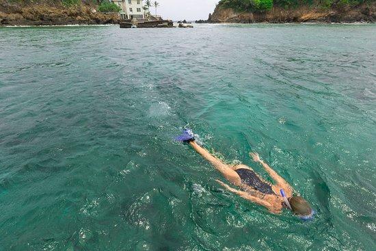 Speyside, Tobago: Snorkelling off shore