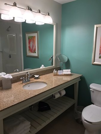 Hotel Indigo Sarasota: Bathroom area