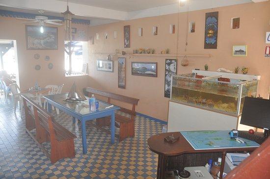 Anse-Bertrand, Guadeloupe: Un vivier pleins de langoustes pour le plaisir des yeux et des papilles