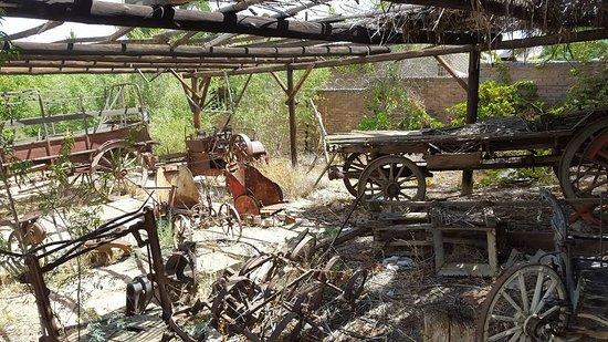Kalahari-Oranje Museum