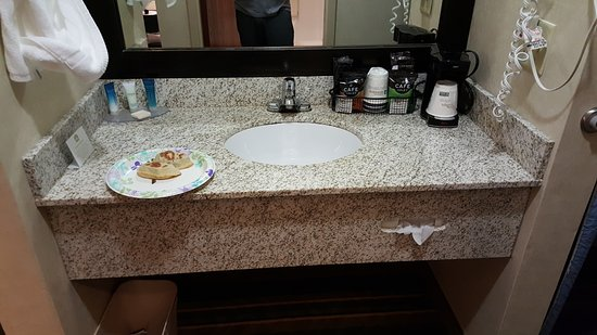 BEST WESTERN PLUS Berkshire Hills Inn & Suites: Sink