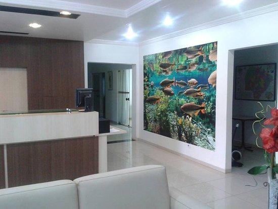 recepção - Picture of Ellus Hotel 4d6a0477f56