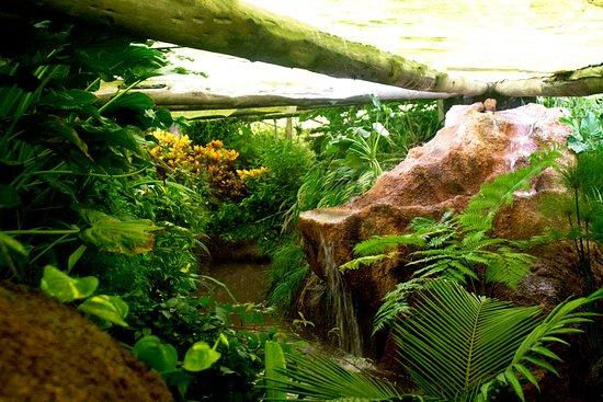 Parque Bioms