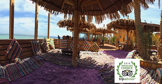 Dive Urge beachfront; soft cushions, shade and sun, delicious food & best snorkelling in Dahab.