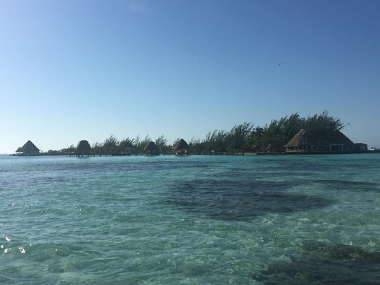 Thatch Caye A Muy Ono Resort Updated 2018 Prices