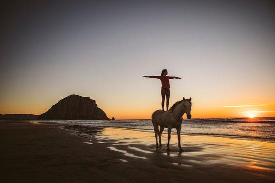 San Luis Obispo County, Kalifornien: Morro Bay
