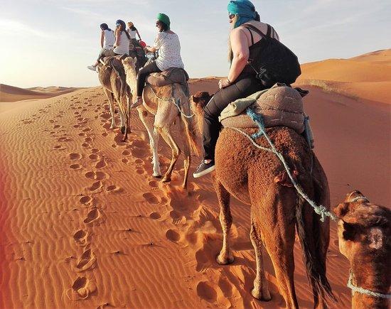Ven al Desierto