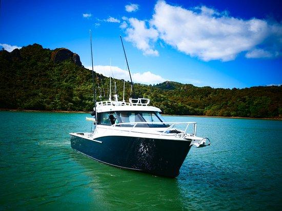 Albacora, brand new Dickey Custom 850, built for sports fishing
