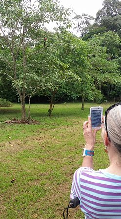 La Virgen, Costa Rica: Take photos with your cell phone