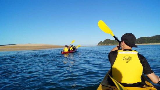 Awaroa Sea Kayaks