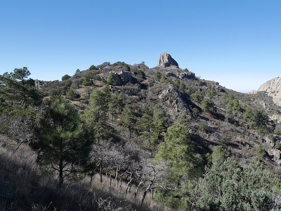 Fort Davis, TX: Summit from the trail
