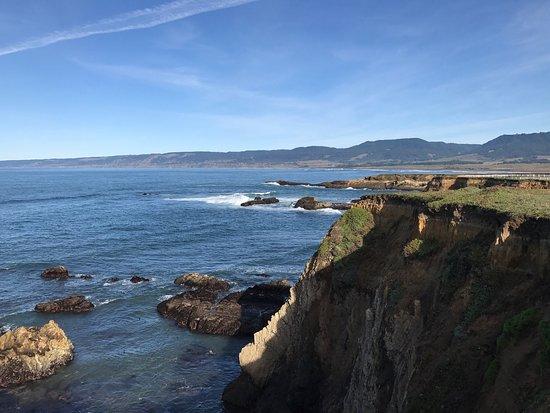 Point Arena, CA: Amazing fun beach day!